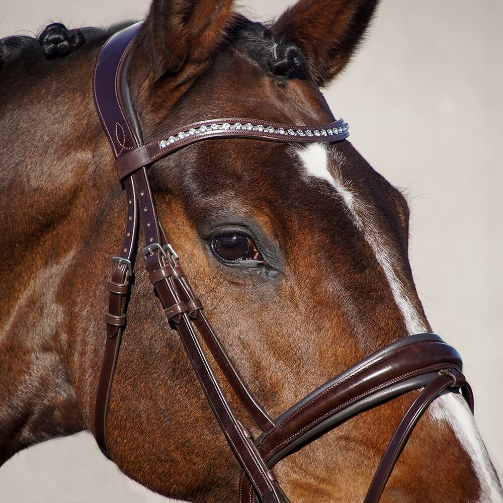 ALEQUI-brown-dressage-bridle.jpg