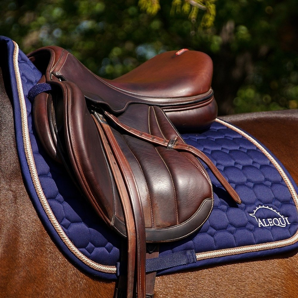 ALEQUI jumping saddle pad blue