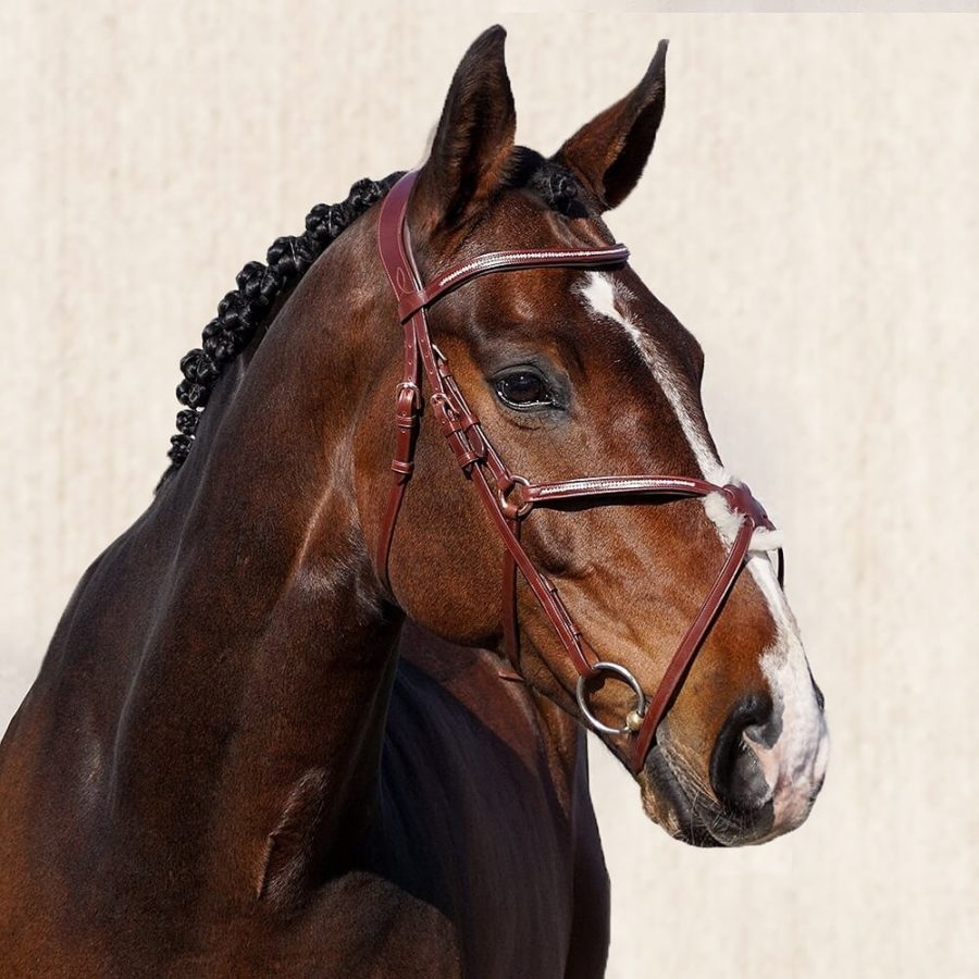 ALEQUI-mexican-bridle-full-picture Sierra