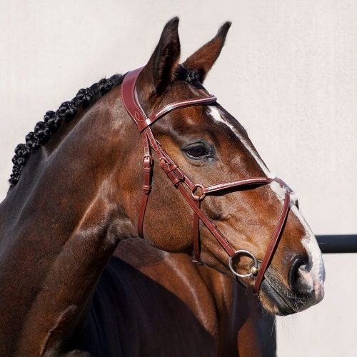ALEQUI-mexican-bridle-full2.jpg
